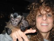 Two sweet baby Capuchin and Two baby Squirrel monkeys Ready !